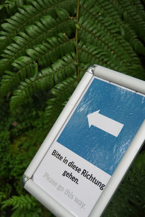 Palmengarten. Pfeil. Bitte in diese Richtung gehen. Pflanzen