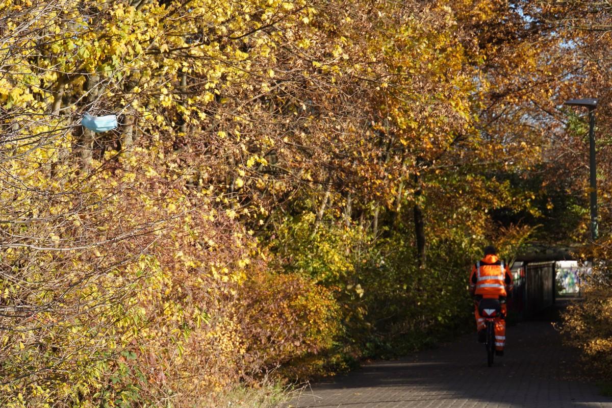 Masken in Bäumen. Fahrrad