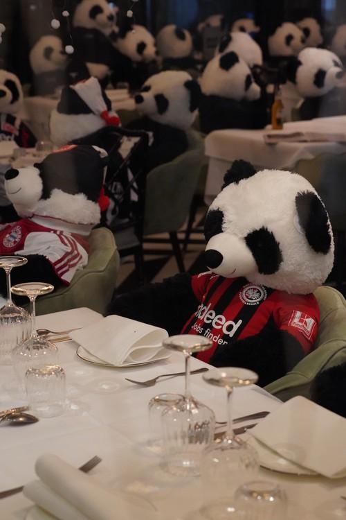 Panda-Mie Ausstellung Restaurant Pino. Gastronomie Lockdown. Stofftiere-Sponsoring. Corona-Bier. Fussball
