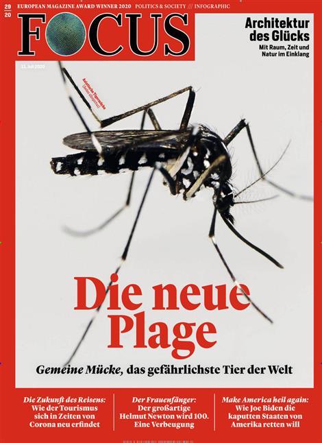 Cover Focus-Zeitschrift 29 2020