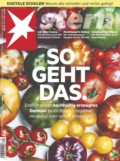 Cover Stern-Zeitschrift 35 2020