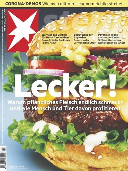 Cover Stern-Zeitschrift 37 2020
